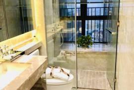 江南岸隨園_珠海 首期10萬 大型屋苑 香港銀行按揭 (實景航拍)