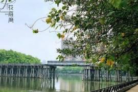 保利花海灣|首期10萬|鐵路沿線優質物業|香港銀行按揭