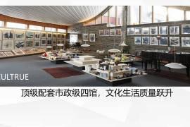 同創華著公館_深圳|鐵路沿線|香港銀行按揭 (實景航拍)